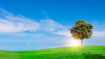 grüne Wiese mit blauem Himmel Sommerwiese Hintergrundkonzept an einem schönen Tag. foto