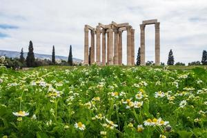 Ruinen des antiken Tempels des Olympischen Zeus in Athen hinter dem Feld der Gänseblümchen foto