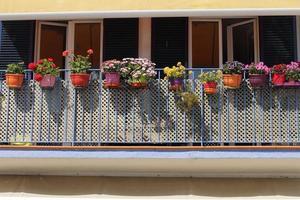 Blumendekoration auf blauem Balkon verschiedene Arten von Blumen Spanien foto