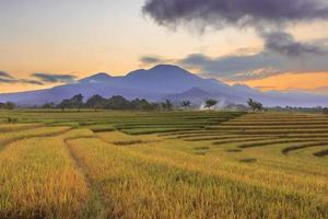 indonesische Landschaftsansicht mit Bergen und Sonnenaufganghimmel am Morgen in einem kleinen Dorfreisfeld in Nordbengkulu foto