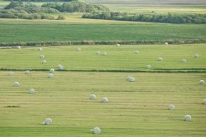 schöne landschaft und sonnenstrahlen in der nähe von kiel, schleswig holstein, deutschland foto