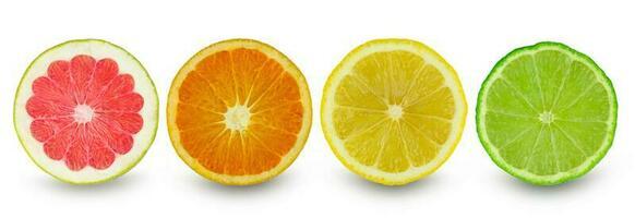 Zitrusscheibe Grapefruit Orange Zitrone und Limette isoliert auf weißem Hintergrund foto