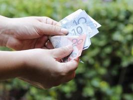 Hände einer Frau, die australische Banknoten in einem Garten zählt foto