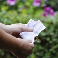 Hände einer Frau, die schwedische Banknoten in einem Garten zählt foto