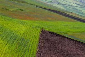 Castelluccio di Norcia und seine blühende Natur foto