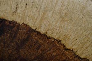 natur Nussbaum Wurzelholz gestreift foto