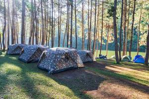 Abenteuer Camping und Camping am Morgen bei leichtem Nebel bei Pang-ung, Mae Hong Son, Thailand foto