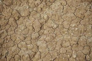 trockener Boden in der Natur foto