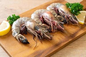 frische Tigergarnelen oder Shrimps an Bord foto