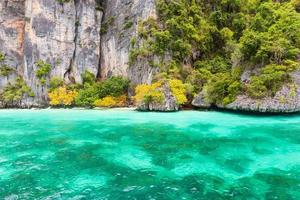 Monkey Bay auf der Insel Phi Phi foto