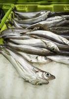 Sardellen und Sardinen Fischhändler foto