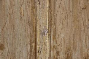 altes gehacktes Holz foto