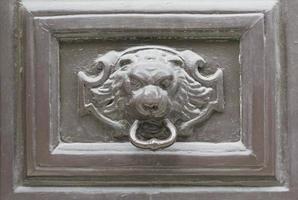 Passepartout mit Löwen foto