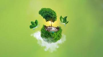 schöner grüner hintergrund foto