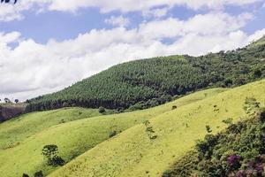 passieren Sie vier Minas Gerais Brasilien foto