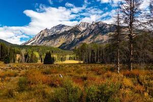 Herbstfarben in all ihrer Pracht entlang des Bow Valley Parkway. Banff-Nationalpark, Alberta, Kanada foto