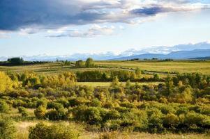Landschaft von Bäumen auf grünem Hügel mit Straße und blauem Himmel im Nationalpark foto