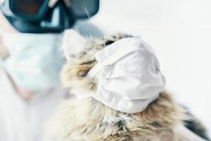 Mann im Anzug und Katze in einer medizinischen Maske foto