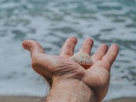 weiße Muschel in männlicher Hand auf dem Hintergrund des Meeres foto
