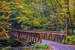 Blick auf den Virginia Creeper Trail im Herbst foto