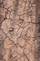 Wüstenbodenhintergrund, globale Erwärmung foto