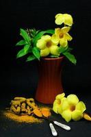 Kurkuma mit gelben Blüten auf schwarzem Hintergrund isoliert. foto