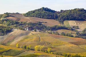 die landschaft der hügel des oltrepo pavese, italien foto
