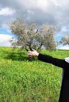 toskanische Landschaft Thema foto