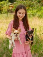 zwei Hunde in den Armen eines Mädchens foto