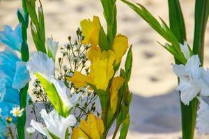 Palmenblume angeboten für Iemanja, an der Copacabana in Rio de Janeiro, Brasilien foto