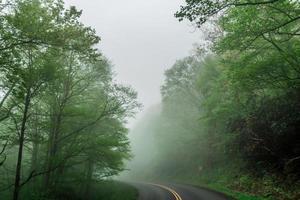 frühmorgendliche Fahrt durch den Blue Ridge Parkway im Frühling foto