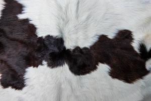 brauner Kuhfellmantel mit Fell schwarz weiß und braunen Flecken foto