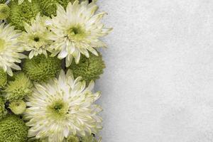 flach liegen wunderschön geblühte Blumen mit Kopierraum foto