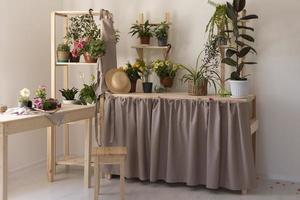 das Gartenhaus mit Pflanzen foto