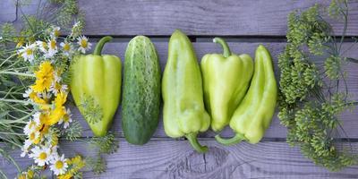 horizontaler Hintergrund aus Gemüse, Blumen und Kräutern. foto