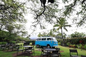 Schnappen Sie auf der großen Insel, Strand 67 hawaii foto