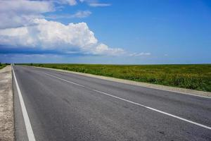 eine lange Autobahn ohne Autos auf dem überwucherten Gras der Steppe foto