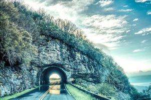 Frühlingstunnel am frühen Morgen in der Nähe von schroffen Gärten North Carolina foto