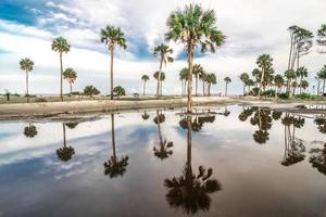 Jagdinsel South Carolina Strandszenen foto