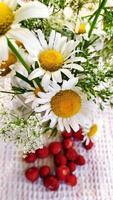 Kamille und Erdbeere. ein Strauß wilder Blumen in einer Vase foto