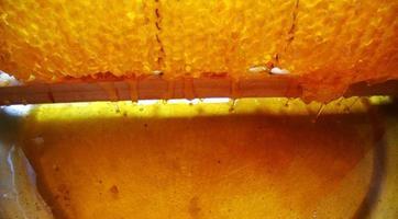 Hintergrundtextur, Tropfen von süßem Honig foto