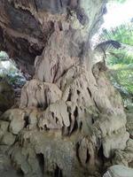 vertikales foto der naturhöhle in thailand