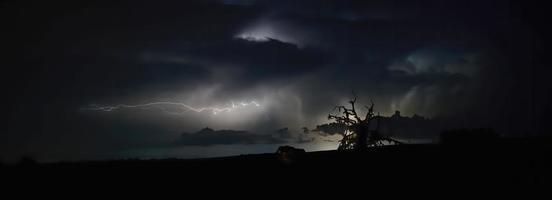 Blitzschlag mit alter toter lebender Eiche Silhouette foto