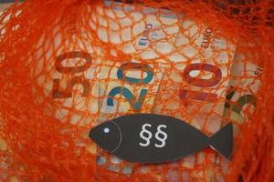 Europäisches Fischereirecht foto