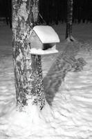mit Schnee bedecktes hölzernes Vogelhäuschen wiegt auf einem Baumstamm foto