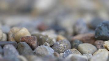 Nahaufnahme von Kieselsteinen mit geringer Schärfentiefe foto
