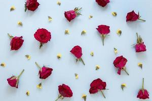 Ansicht von oben wunderschönes Blumensortiment foto