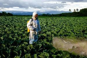Gärtner in Schutzanzug und Maske sprühen Insektizid und Chemie foto