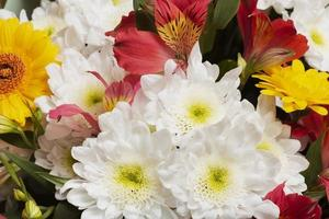 die Anordnung schöner Blumenhintergrund foto