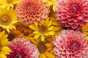 die Zusammensetzung schöner Blumenhintergrund foto